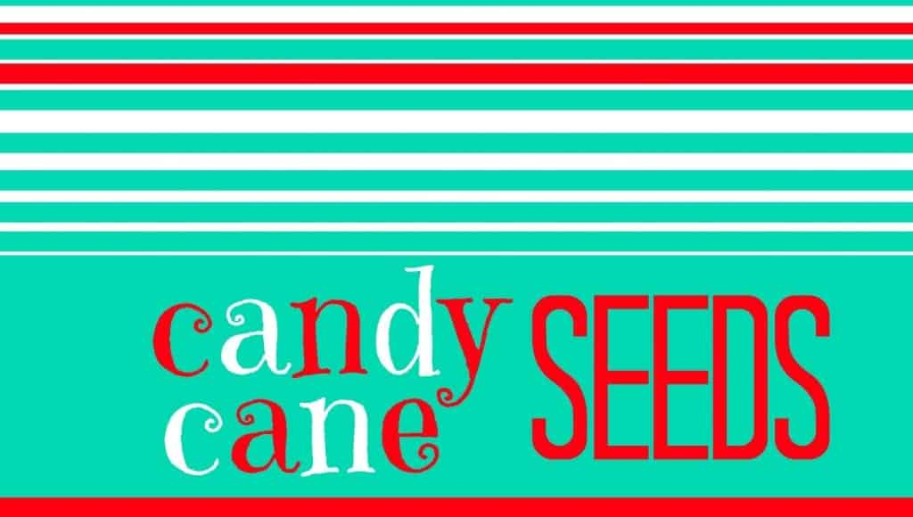 candy cane seeds in blue