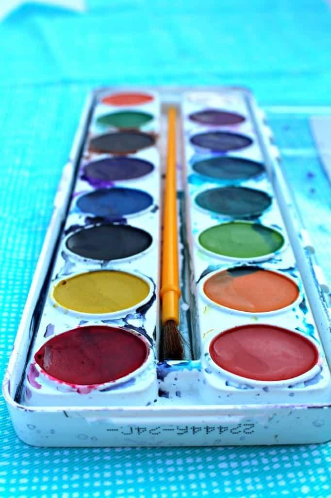 coloreds