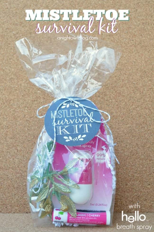 Mistletoe-Survival-Kit-1