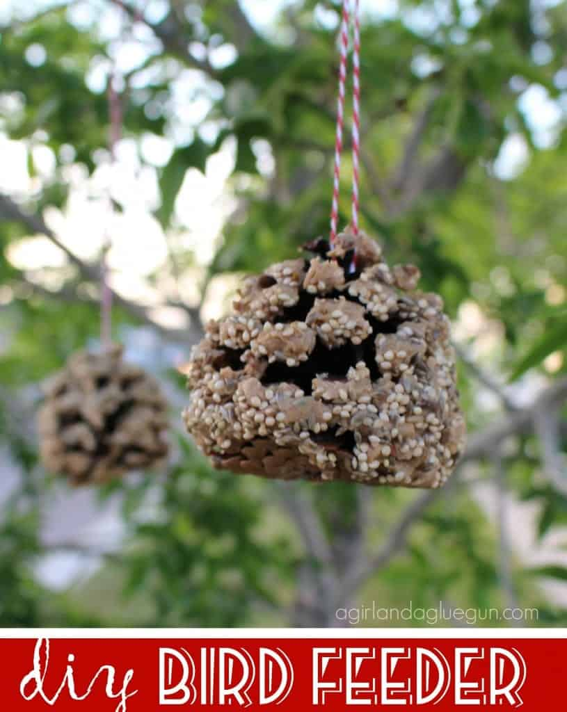 diy bird feeder peanut butter and bird seed