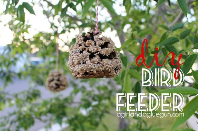 diy bird feeder with pine cone