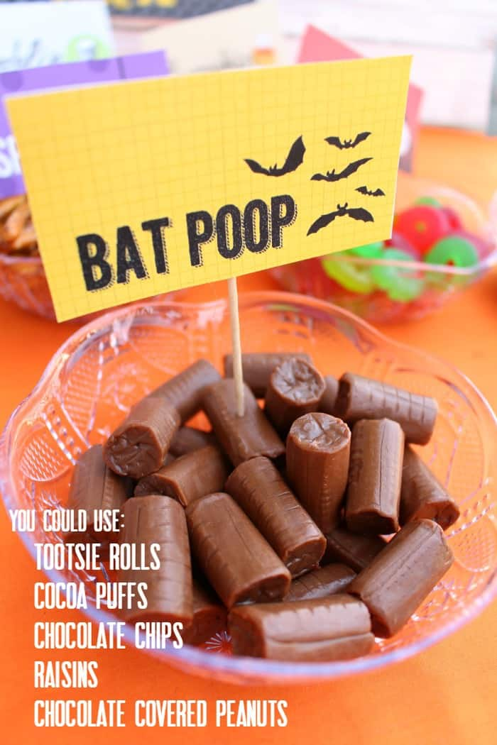 bat poop ideas