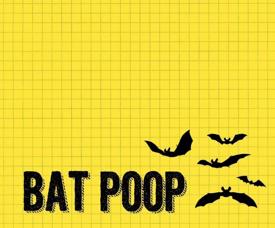 bat poop printables