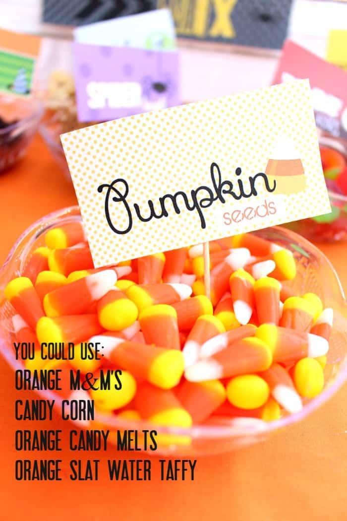 pumpkin seed ideas