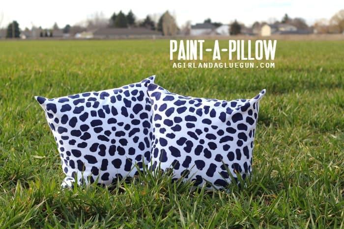 paint a pillow