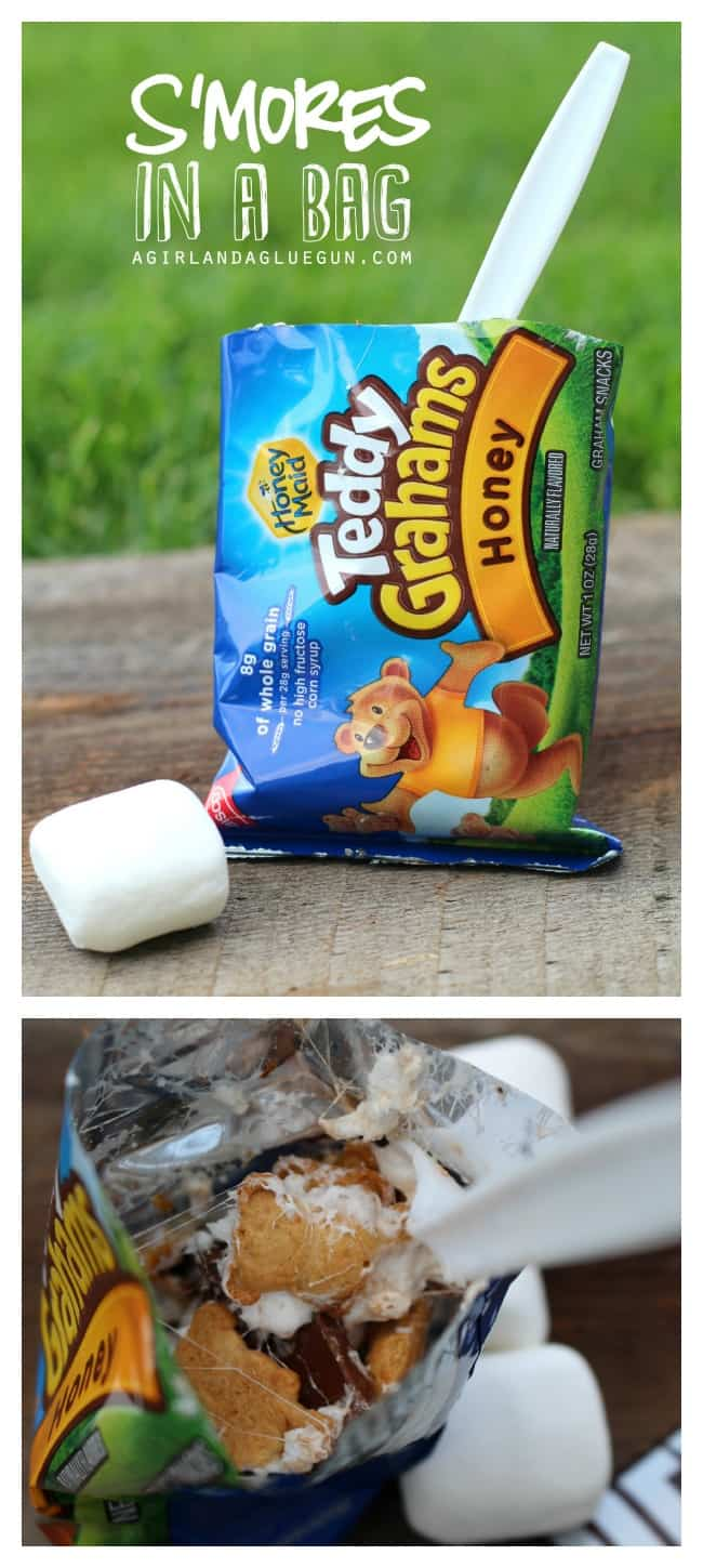 s'mores in a bag--best campfire treat