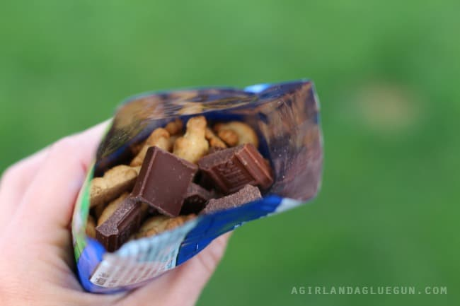 smores in a bag how to