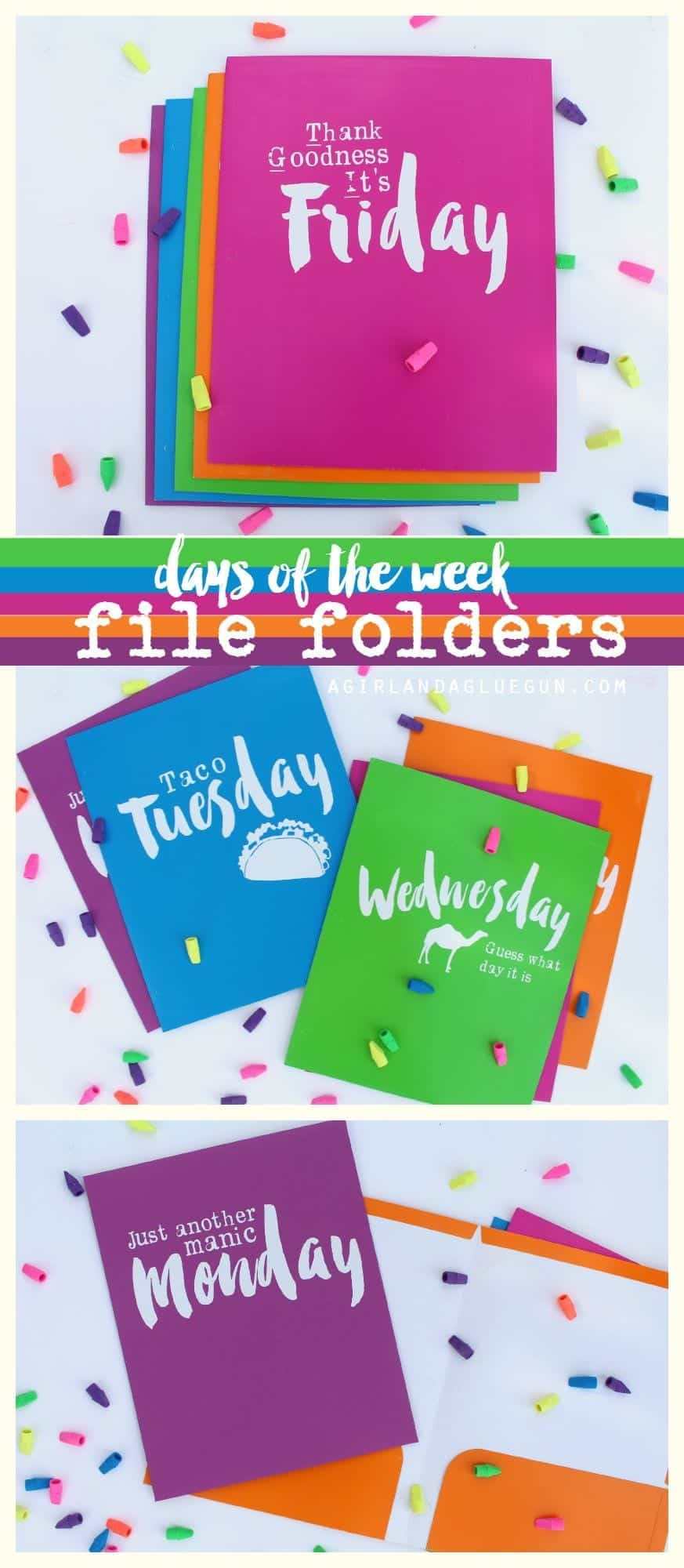 days of the week file folders with expressions Vinyl