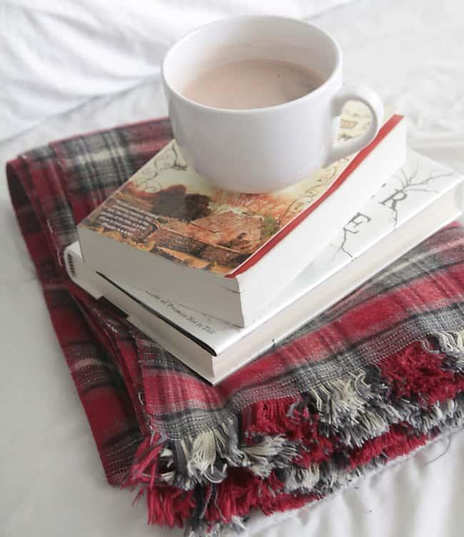 flannel-throw-easy-diy-fringed-fringe-blanket-handmade-gift-idea-christmas-holidays-how-to-make-3