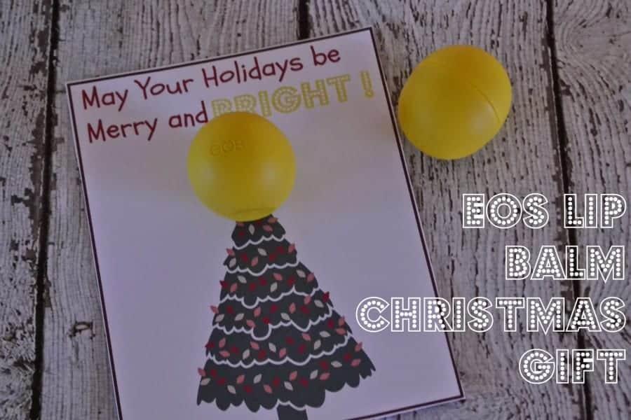 EOS Lip Balm Christmas Gift