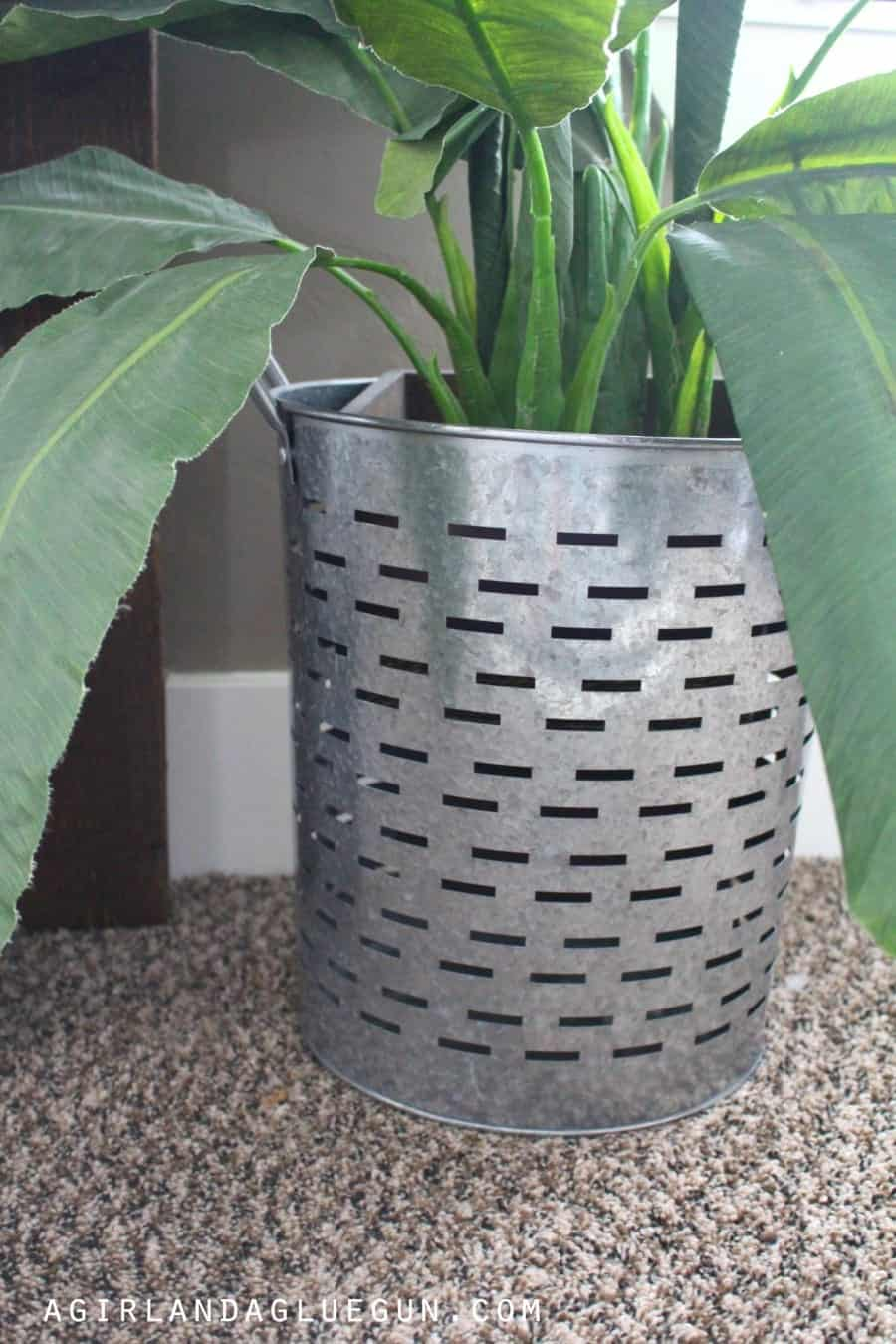 basket for plant