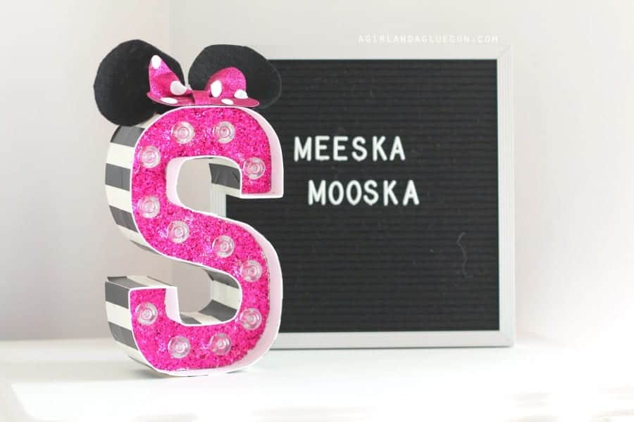fun minnie mouse present gift idea