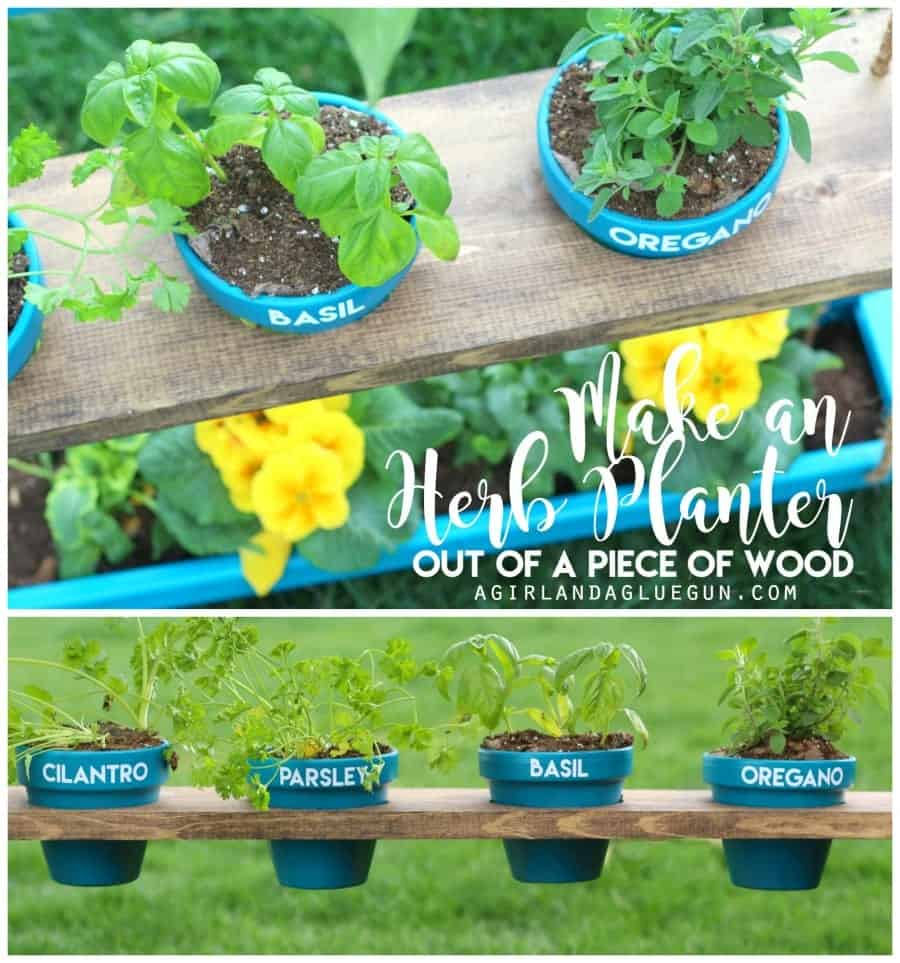 make an herb planter out of a piece of wood