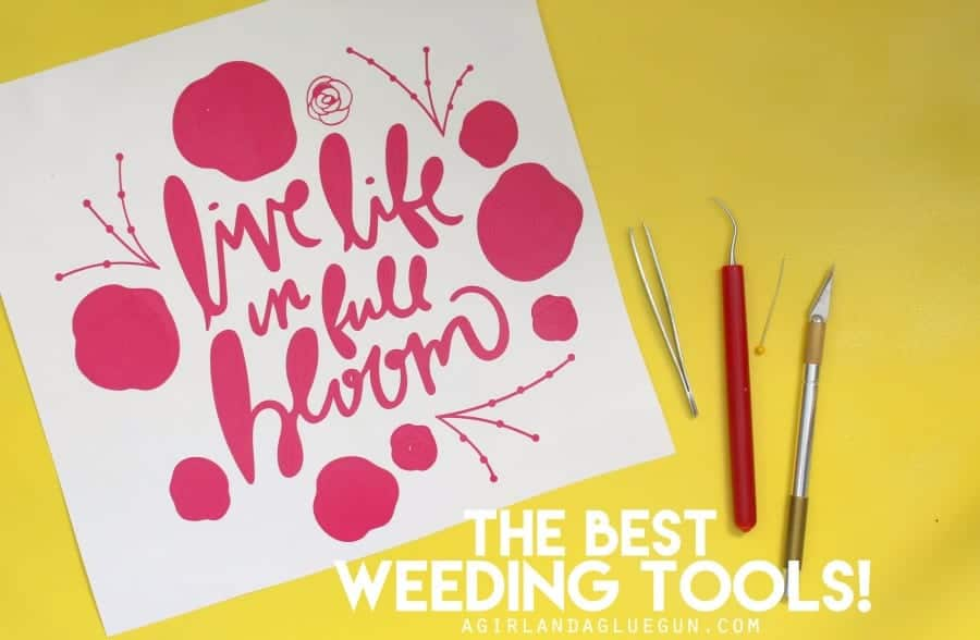 the best weeding tools