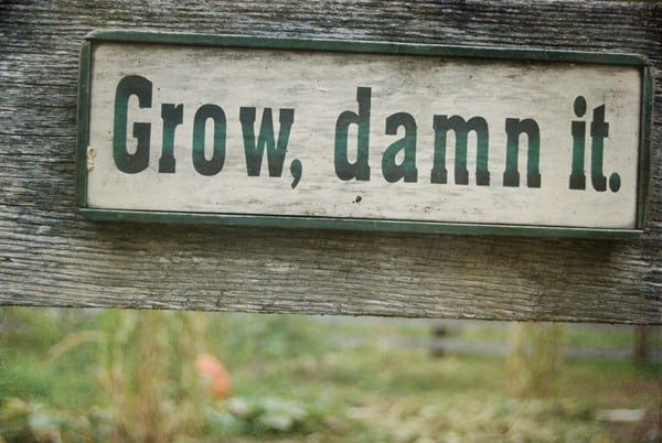 Gentil 25 Hilarious Signs To Put In Your Garden. Gosh Darn You! Grow_thumb2