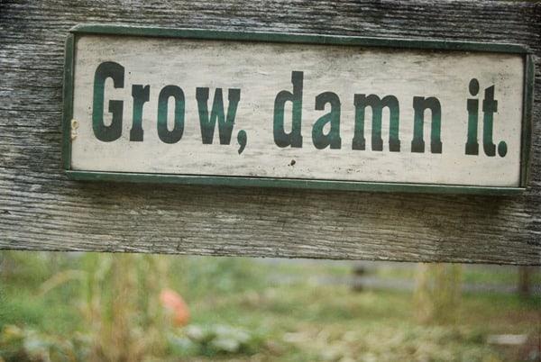 grow_thumb2