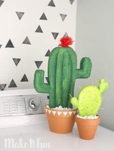 Fake Cactus!