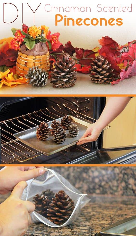 cinnamon-scented-pinecone