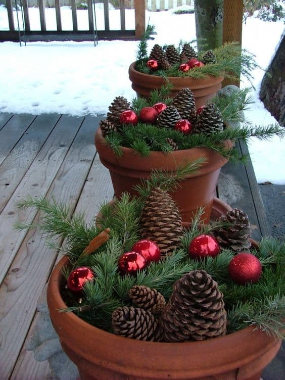 pinecone-display