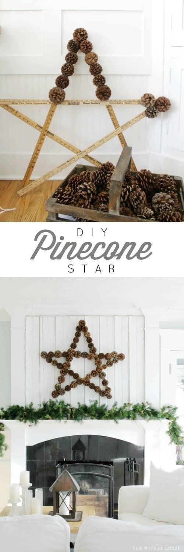 pinecone-star