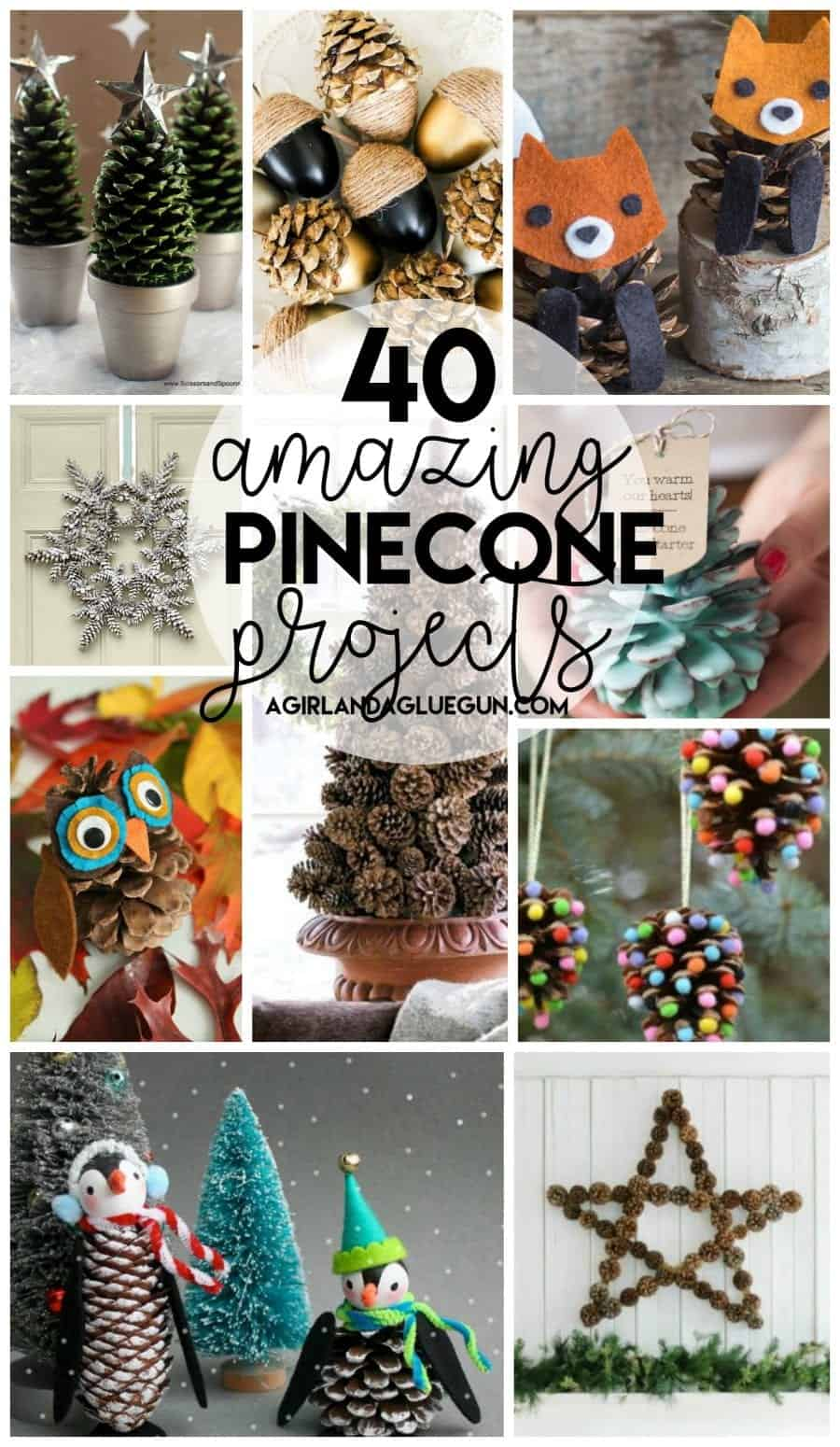 40 awesome pinecone crafts and projects - A girl and a glue gun