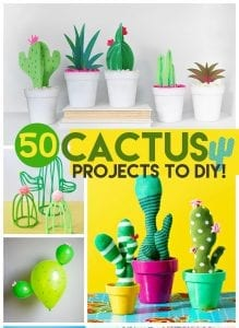 Cactus Diy Roundup