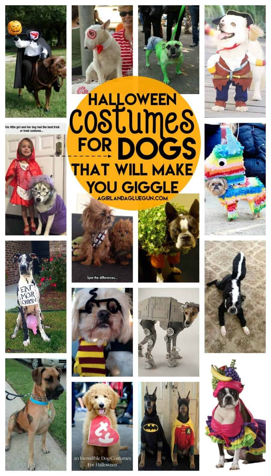 The best halloween costumes for dogs a girl and a glue gun and after you see these hilarious costumes you will want to grab your dogor go buy a dogjust to dress them up check them out for yourself solutioingenieria Choice Image