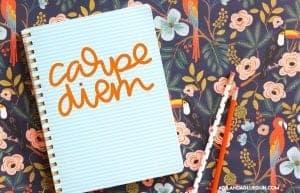 carpe diem cut file