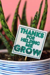 https://www.agirlandagluegun.com/wp-content/uploads/2021/05/teacher-gift-appreciation-idea--200x300.jpg